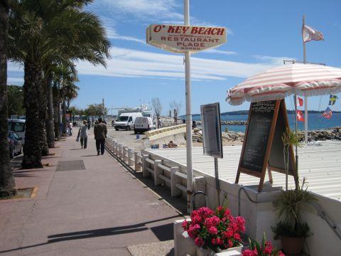 Restaurant Ouvert  Decembre Cannes